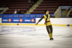 Professional Skater