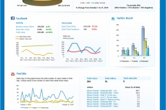 Social Media Dashboard Reporting 2